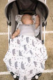 嬰兒推車使用者
